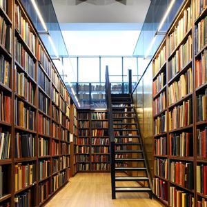 Библиотеки Домодедово