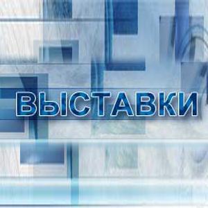 Выставки Домодедово